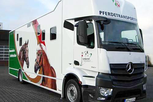Horse transporter for 6 horses + team room